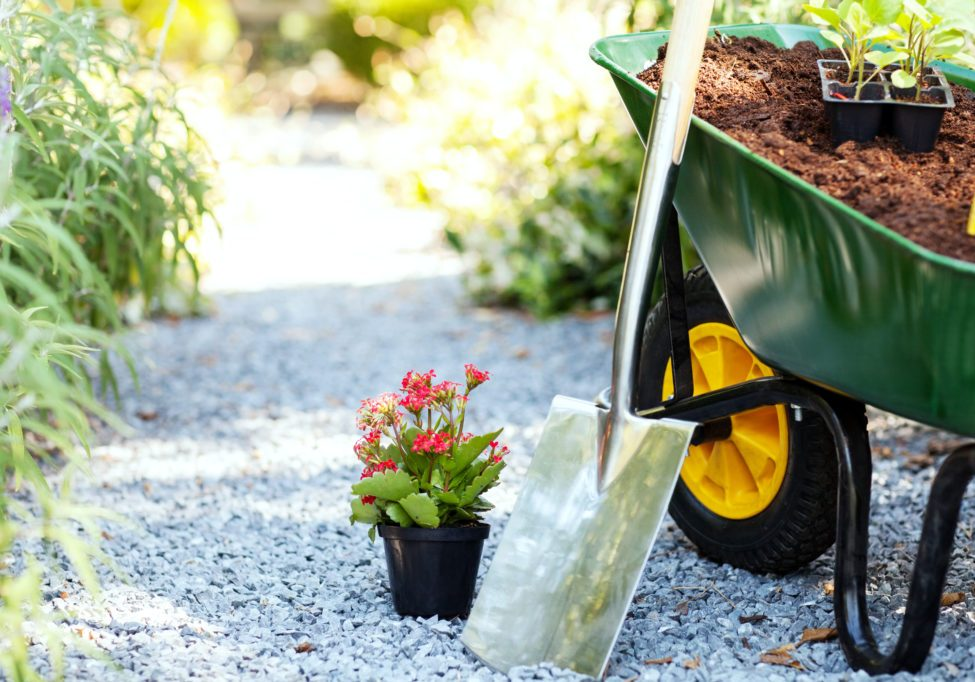 Wheelbarrow with shovel and flower pot in garden.